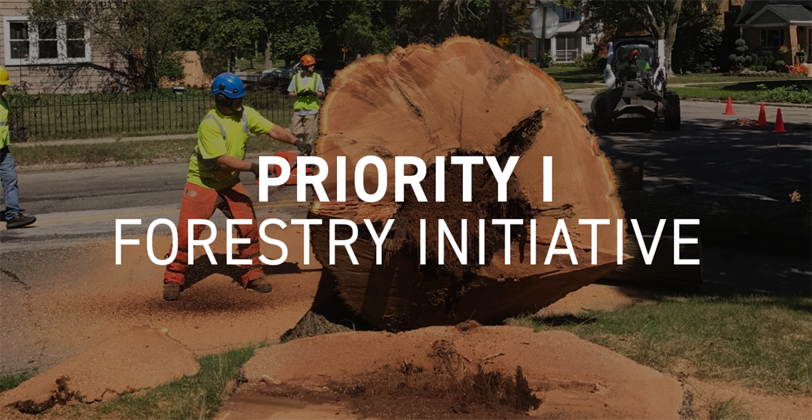 Priority I Forestry Initiative